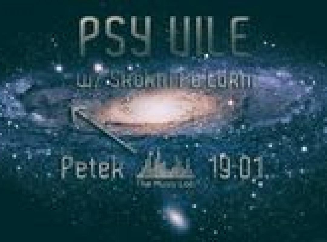 PSY VILE SkokniPaLokni 3h extended DJset