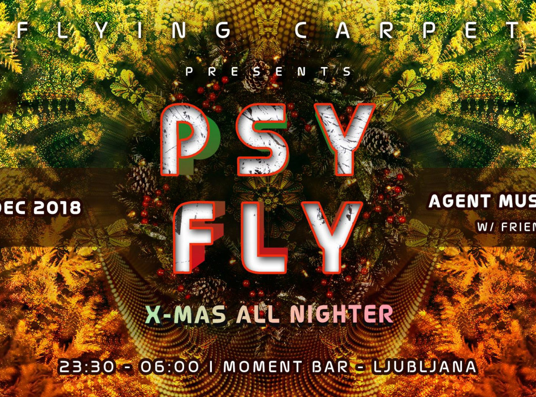 PSY FLY w/ AgentMushroom X-mas AllNighter