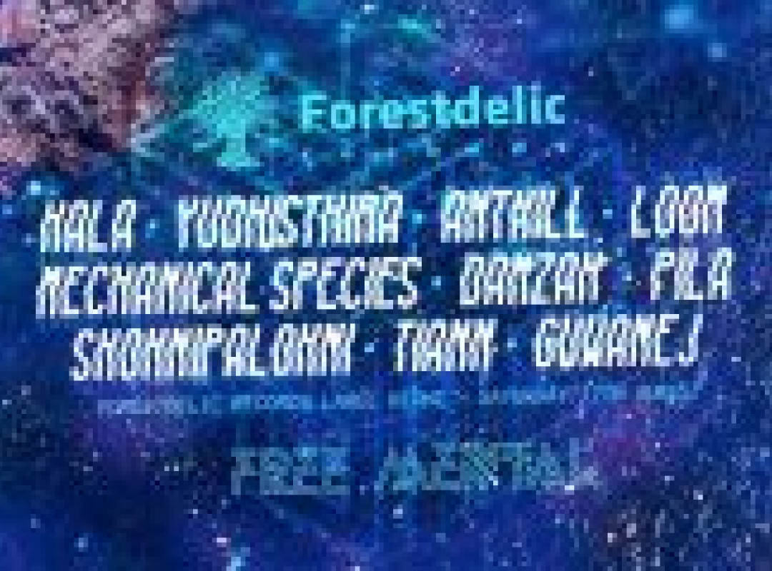 Forestdelic night at Free Mental Festival