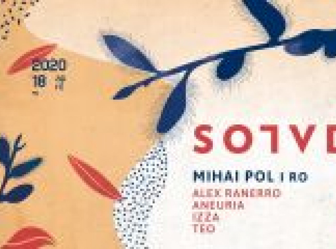 SOLVD w/ Mihai Pol (Subtil, Telum / RO)